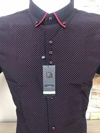 Рубашка Pacolmen, фото 2