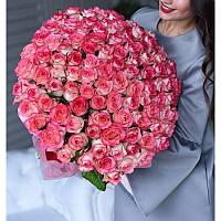 Букет из 101 розы Джумилия, фото 1