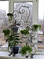 Бегония-3, подставка для цветов на 12-24 чаши, фото 1