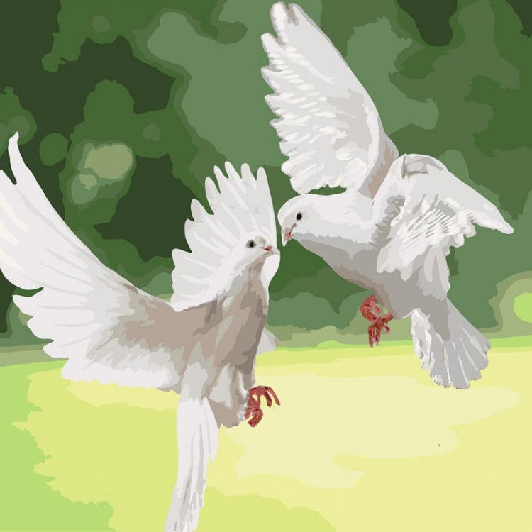 "Картина по номерам на холсте ""Белоснежные голуби"" KHO4149"