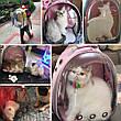 Рюкзак переноска для кошки собаки Желтый, сумка для кота собак и домашних животных прозрачный, рюкзаки с иллюминатором переноски Cosmopet Upet AnimAll, фото 4