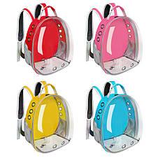 Рюкзак переноска для кошки собаки Розовый, сумка для кота собак и домашних животных прозрачный рюкзаки с иллюминатором переноски Cosmopet Upet AnimAll, фото 2