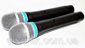 База 2 радиомикрофона Радиосистема DM EW 100