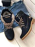Зимние синие ботинки из нубука, фото 6