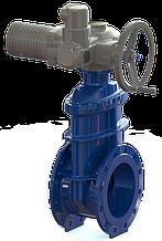Засувка з гумованим клином T. I. S service (Італія) A021 PMOT I DN80 PN16 з електроприводом AUMA SA07.6