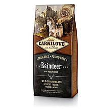 Корм для собак Carnilove Adult Raindeer 12кг