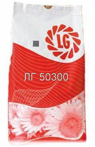 Насіння соняшнику ЛГ 50300 Круїзер