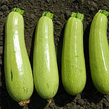 """""""Каризма"""" F1 (100 семян) от Syngeta, фото 2"""