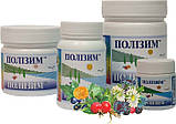 Полизим-10 (глисты, аллергия, экзема) 280грамм, фото 3