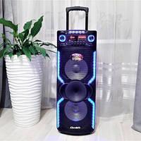 Портативная акустическая система Rainbarg MR-1010С