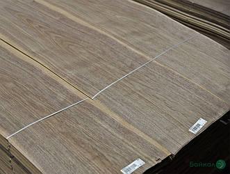 Шпон Горіх Американський - 0,6 мм I гатунок - довжина от 2 до 3.80 м / ширина от 12 см+