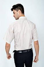 Рубашка Zeg 818-92 цвет Коричневый, фото 2