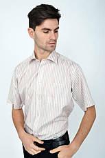 Рубашка Zeg 818-92 цвет Коричневый, фото 3