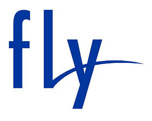 Дисплей Fly