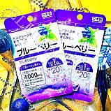 "Екстракт чорниці ""Blueberry"" Daiso Japan., фото 2"