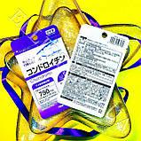 Хондроітин / Chondroitin Японія! Daiso, фото 2