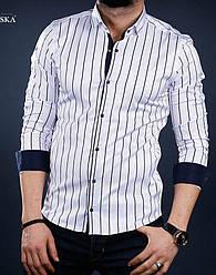 01-41-303 Белая рубашка в мелкую темно-синюю полоску на кнопках