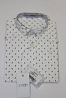 Детская рубашка для мальчиков с длинным рукавом на 12 месяцев, Италия AYGEY
