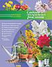 Садові декоративні рослини. Домашня ілюстрована енциклопедія