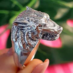 Серебряное кольцо Волк - Мужское кольцо из серебра с Волком