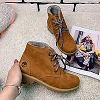 Зимние ботинки  (на меху) женские Timberland   [38,39.40]