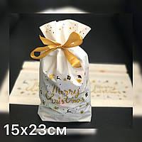 Новогодний пакет для упаковки конфет, выпечки 15х23см