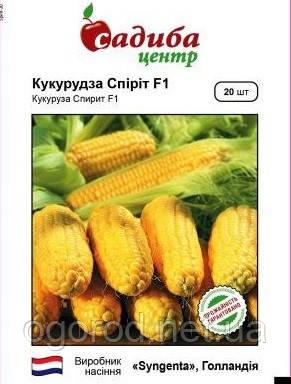 Спирит F1 20 шт семена кукурузы Syngenta Голландия