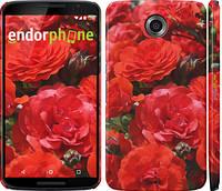 """Чехол на Motorola Nexus 6 Красные розы """"2895c-67"""""""