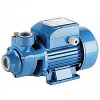 Поверхностный насос для подачи воды в дом и полива Delta PKM 60 (Напор 35 м. Подача 35 л/мин.) (Euroaqua)