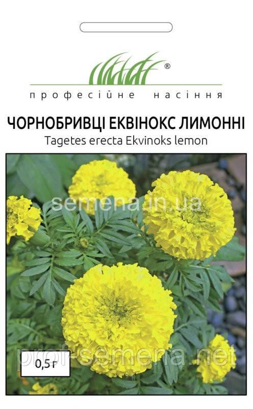 Чорнобривці Еквінокс лимонні 0,5 г.