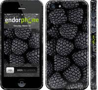 """Чохол на iPhone 5s Чорна ожина """"2873c-21"""""""