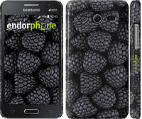 """Чехол на Samsung Galaxy Core 2 G355 Черная ежевика """"2873c-75"""""""