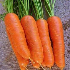 Семена Морковь Яркая 2 гр W.Legutko (2535)
