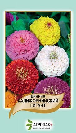 Семена Цинния Калифорнийский гигант 0,5 г W.Legutko 5173, фото 2