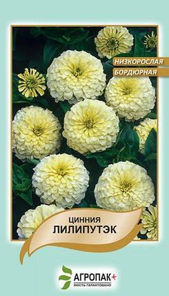 Семена Цинния Лилипутэк белая низкорослая бордюрная 0,2 г W.Legutko 5176, фото 2