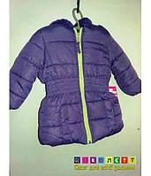 Куртка Детская Демисезон (еврозима) на девочку Pink Platinum