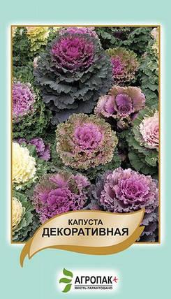 Семена Капуста декоративная  50 сем W.Legutko 5186, фото 2