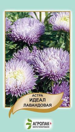 Семена Астра Идеал лавандовая 0,1 г W.Legutko 5009, фото 2