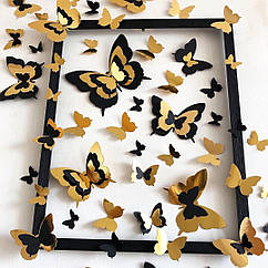 Картина бабочки Альба