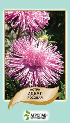 Семена Астра Идеал розовая 0,1 г W.Legutko 5011, фото 2