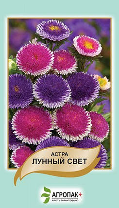 Семена Астра Лунный свет 0,2 г W.Legutko 5014, фото 2