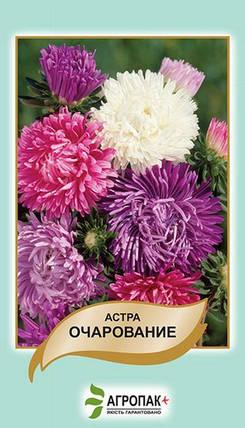 Семена Астра Очарование смесь 0,3 г W.Legutko 5015, фото 2