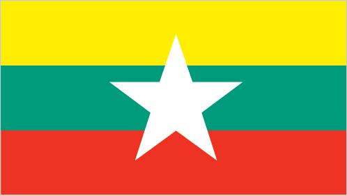 Арабика М'янма (Бирма) (Myanmar Green Land Estate) 500г. ЗЕЛЕНЫЙ