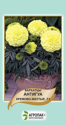Семена Бархатцы Антигуа кремово-желтые F1 10 сем Cerny 5027, фото 2