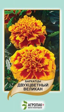 Семена Бархатцы Двухцветный Великан  0,5 г W.Legutko 5029, фото 2