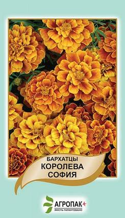 Семена Бархатцы Королева София 0,5 г W.Legutko 5032, фото 2