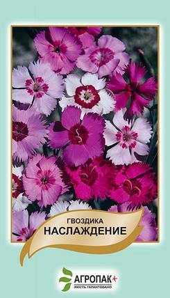 Семена Гвоздика Наслаждение 0,05 г W.Legutko 5059, фото 2
