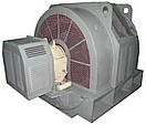 Электродвигатель СДНЗ-15-49-12 1000кВт/500об\мин синхронный 6000В, фото 2