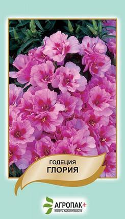Семена Годеция Глория 0,2 г W.Legutko 5066, фото 2
