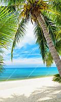 Фотообои на флизелиновой основе - Пляж и пальма (ширина рулона -1,03м)